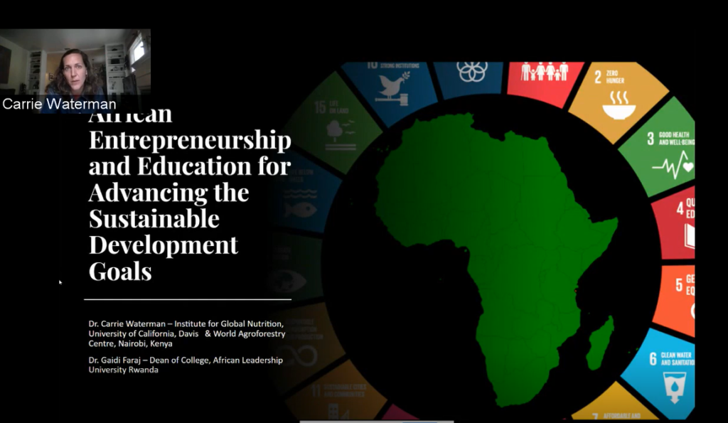 African Entrepreneurship and Education for Advancing the SDGs