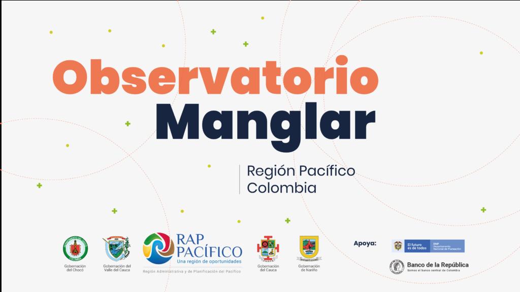 Observatorio Manglar